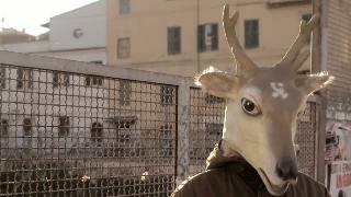 Trailer Palladium 2012